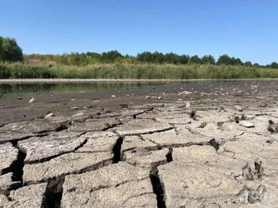 У Кіровоградській області жителі кількох сіл потерпають від посухи