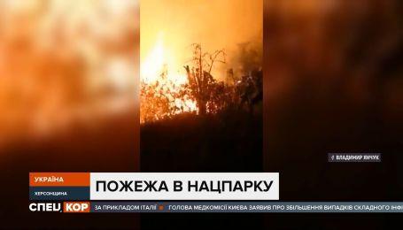 В Херсонской области загорелся камыш вероятно из-за поджога сухостоя – огонь уничтожил 5 сараев