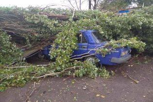 Очевидцы разрушительного смерча в Херсонской области опубликовали видео последствий