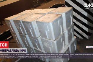 """Ікра на мільйони: співробітники СБУ та прикордонники затримали """"Газель"""" з контрабандою"""