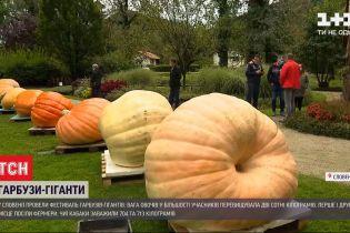 Осенний рекорд: в Словении провели фестиваль тыкв-гигантов