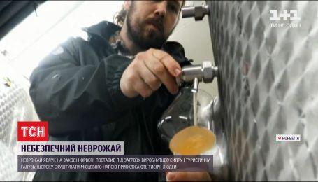 Неурожай яблок в Норвегии поставил под удар производство сидра