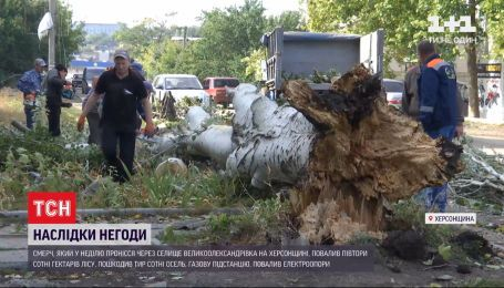 150 гектарів зруйнованого лісу та 300 пошкоджених осель – у Херсонській області пройшов смерч