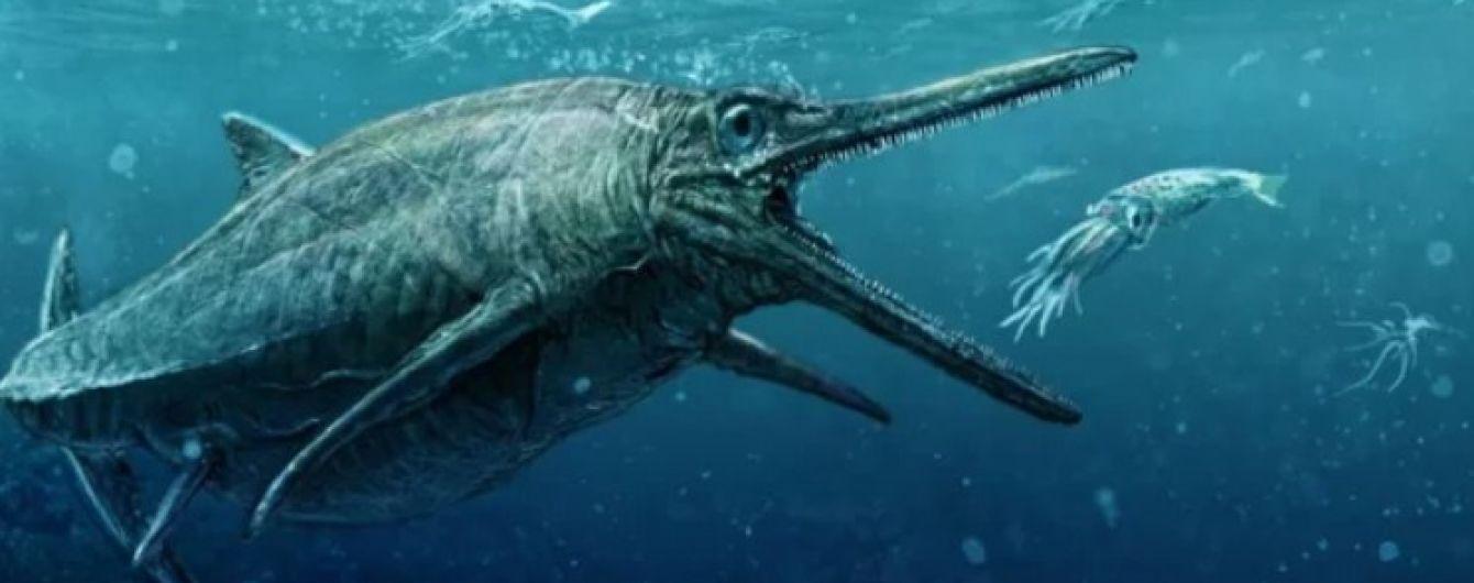Більше ніж кит: знайдено фрагмент підводної істоти розміром у понад 30 метрів