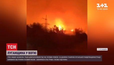 Три человека погибли, еще трое госпитализированы - последствия масштабных пожаров в Луганской области