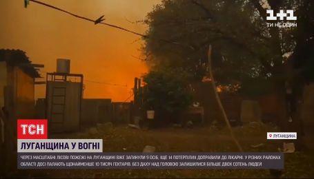 Масштабные пожары в Луганской области не утихают