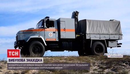 В Николаевской области изъяли артснаряд разного калибра