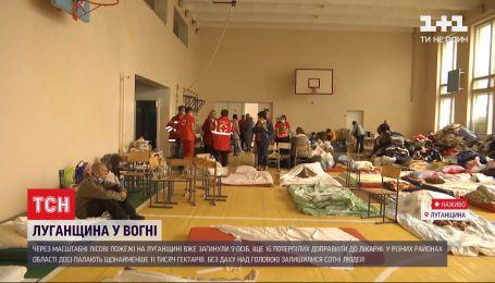 Пожежі у Луганській області: мешканців понад 30 населених пунктів довелося евакуювати