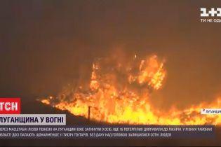9 погибших, 14 пострадавших: в Луганской области продолжает бушевать пожар