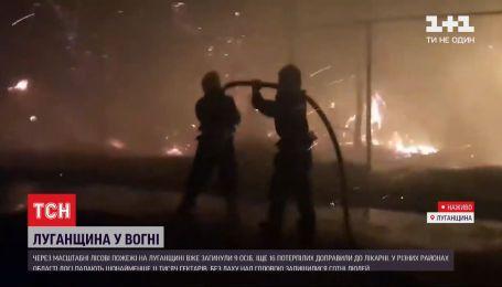 Масштабні пожежі у Луганській області: які є прогнози щодо ситуації