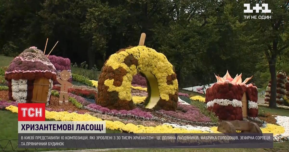 У Києві з'явились квіткова зефірна фортеця та долина льодяників