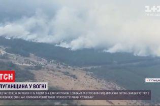 Чиновники на вертолете инспектировали зону пожаров в Луганской области