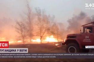 Під час пожеж в Луганській області загинули 8 людей