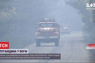 ТСН дізналася подробиці масштабної пожежі у Луганській області