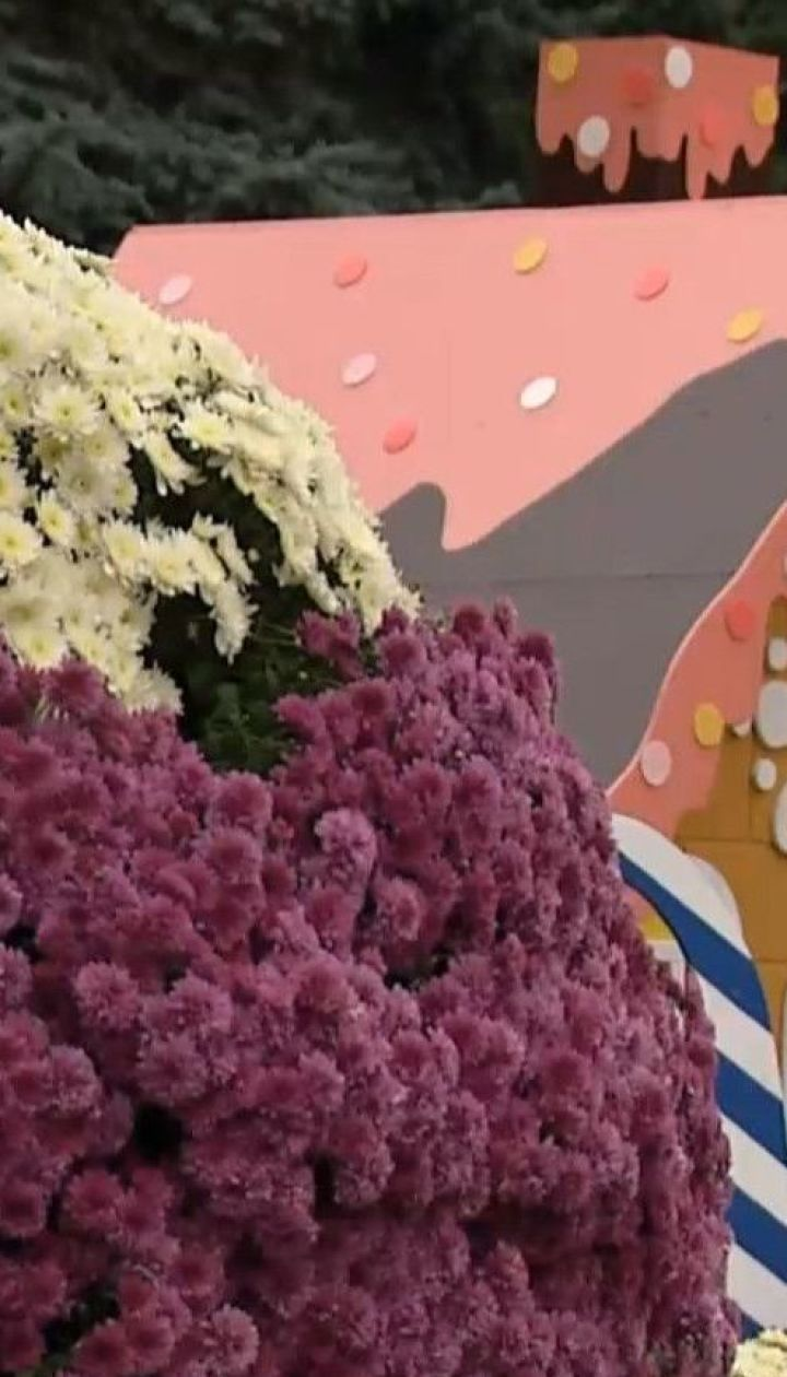 У Києві з осінніх квітів облаштували зефірну фортецю