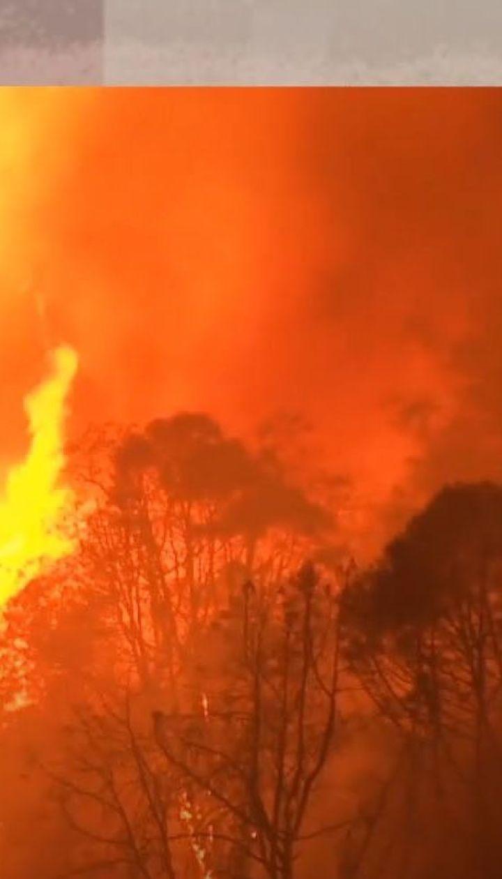 Калифорния в огне: что останавливает пламя уничтожить целый штат — Секретные материалы