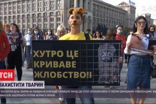 Чтобы напомнить властям о проблемах эксплуатации и издевательства над животными, зоозащитники вышли в центр Киева
