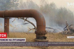 Правоохоронці розслідують 10 кримінальних проваджень за фактом пожеж в Луганській області