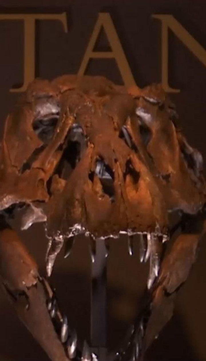 В Соединенных Штатах за 6 миллионов продадут знаменитого тираннозавра по имени Стэн