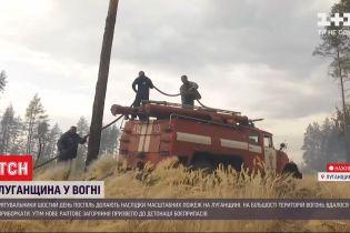 Пожежі у Луганській області: чи існує загроза подальшого розповсюдження полум'я
