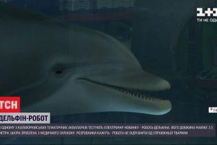 Робот-дельфин: в Калифорнии тестируют электронную новинку длиной почти 2,5 метра