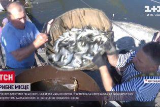 Рибзавод у Херсонській області відкрив сезон зариблення