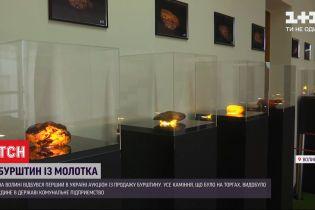 Янтарь с молотка: в Украине впервые состоялся открытый аукцион по продаже природного камня