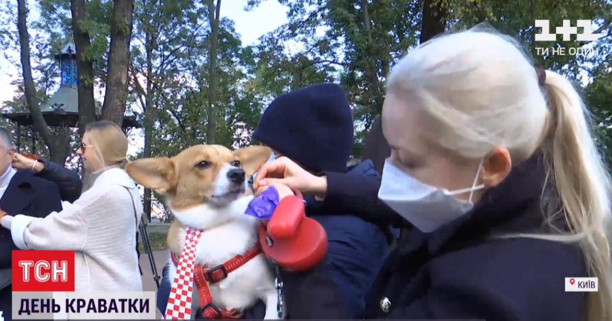 День галстука в Киеве: на Андреевском спуске прохожим раздавали бумажные аксессуары