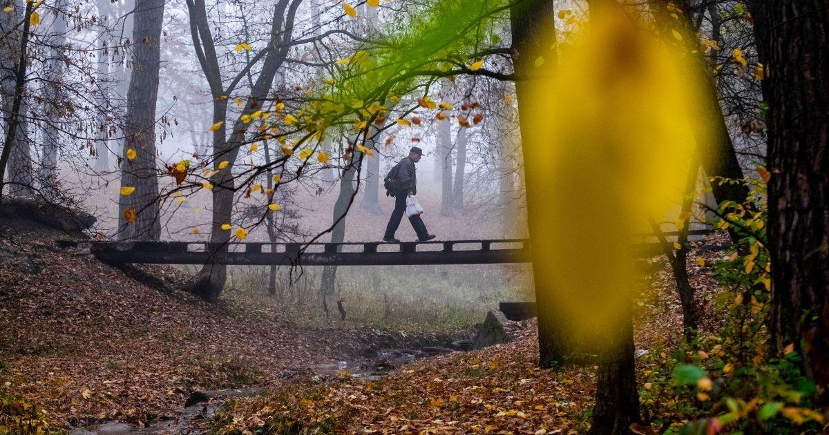Сухо и холодно, в Карпатах мороз до -3°: прогноз погоды в Украине на вторник, 20 октября