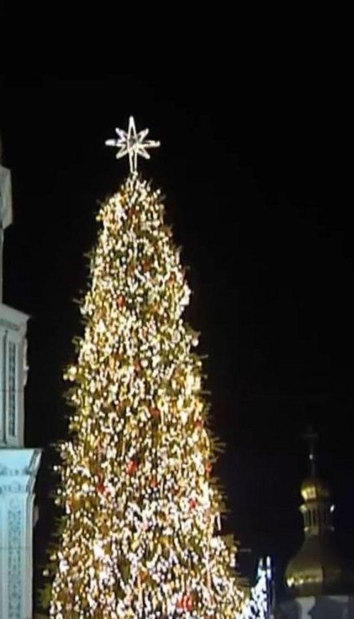 Несмотря на карантин главную елку страны установят на Софийской площади