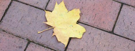 Похолодание, местами дожди и туман: прогноз погоды в Украине на выходные, 24-25 октября