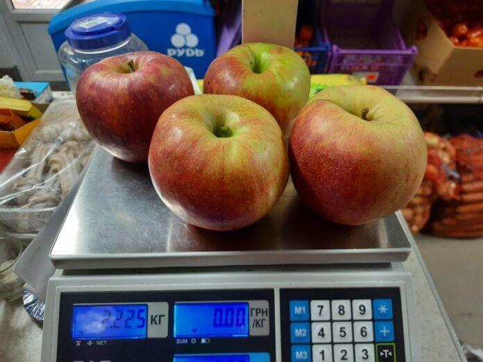 Яблука-гіганти