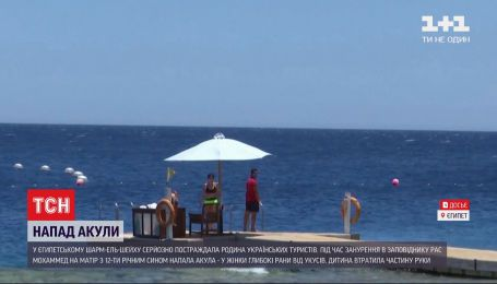 В Шарм-эль-Шейхе акула атаковала украинских туристов