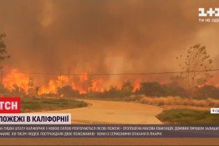 На юге штата Калифорния объявили массовую эвакуацию из-за масштабных пожаров