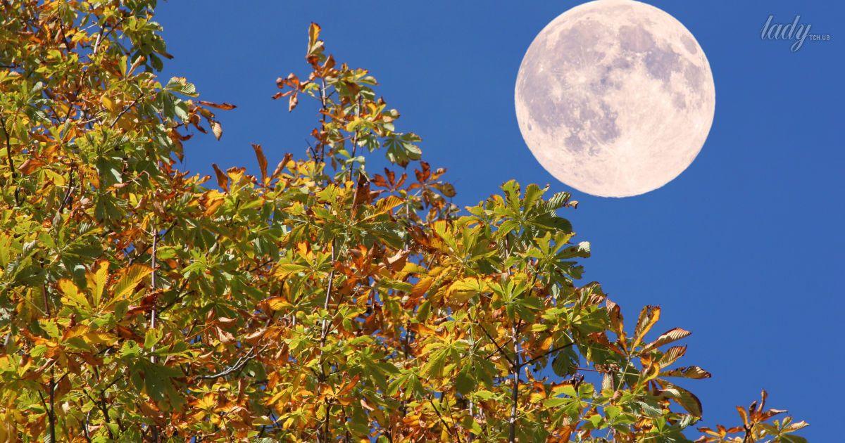 Місячний календар на 22-24 листопада: дні, коли не потрібно робити процедури для обличчя