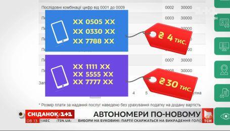 В Україні змінюють правила видачі автономерів — пряме включення