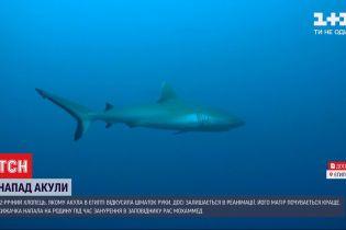 Після нападу акули на українців, влада Шарм-ель-Шейху тимчасово обмежила доступ до пляжів