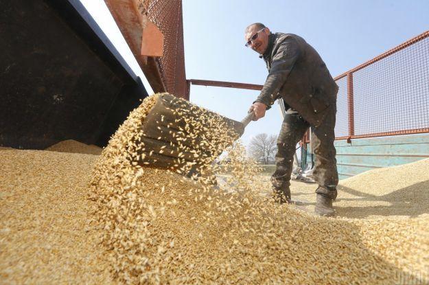 Украина — второй крупнейший экспортер зерна в мире после США
