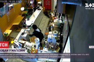 Дикий кабан забежал в чайную лавку среди китайского города Нанкин