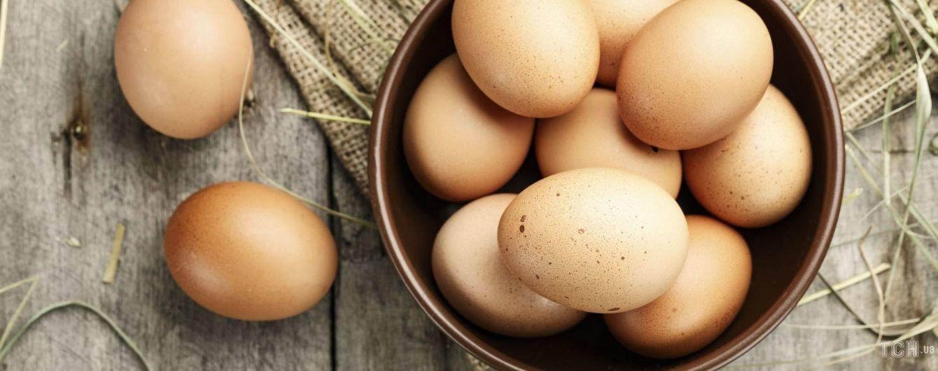 В Україні знизилося виробництво яєць: що тепер з цінами