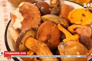 Готовим грибы вкусно и полезно