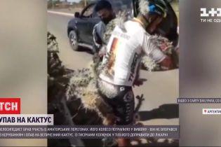В Аргентині велосипедист упав на величезний кактус і потрапив до лікарні