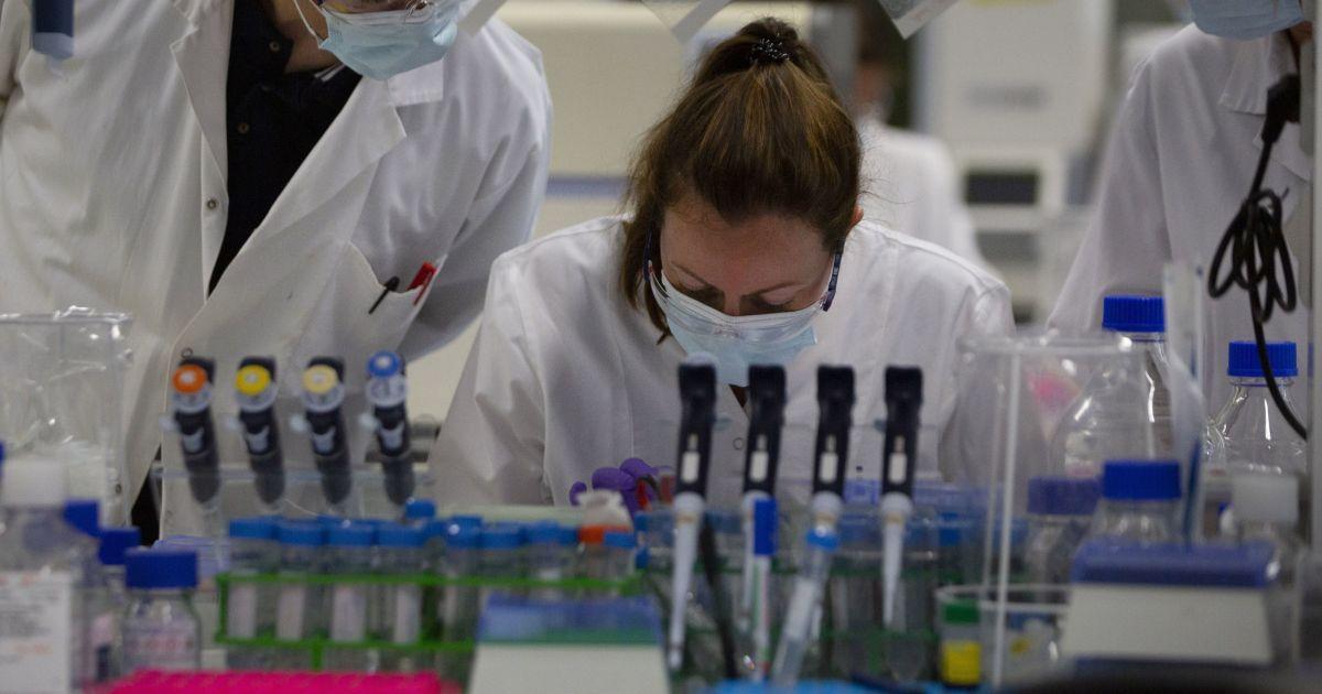 Холестерин помогает коронавирусу заражать человека: новое исследование