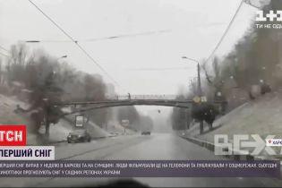Украина с первым снегом: в нескольких областях ночью засыпало белым
