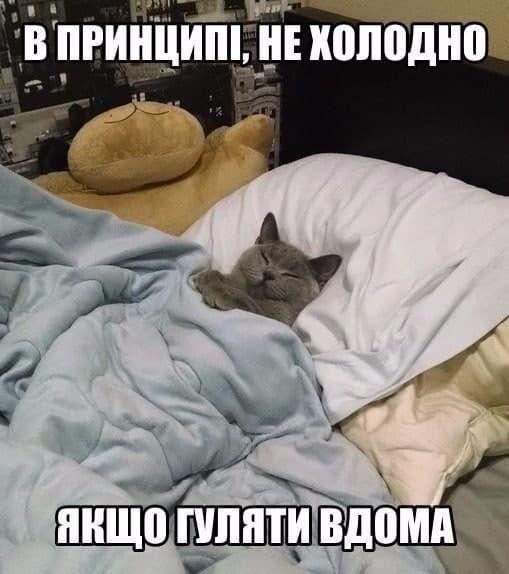 сніг мем
