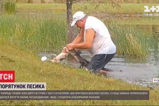 У Флориді чоловік врятував свого песика з пащі алігатора