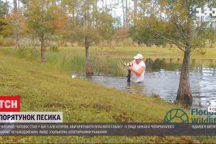 Мужчина во Флориде бросился в бой с аллигатором ради спасения своей собаки