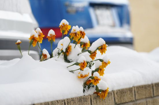 Прогноз погоды на 4 декабря: в Украине местами будет гололедица и шквальный ветер