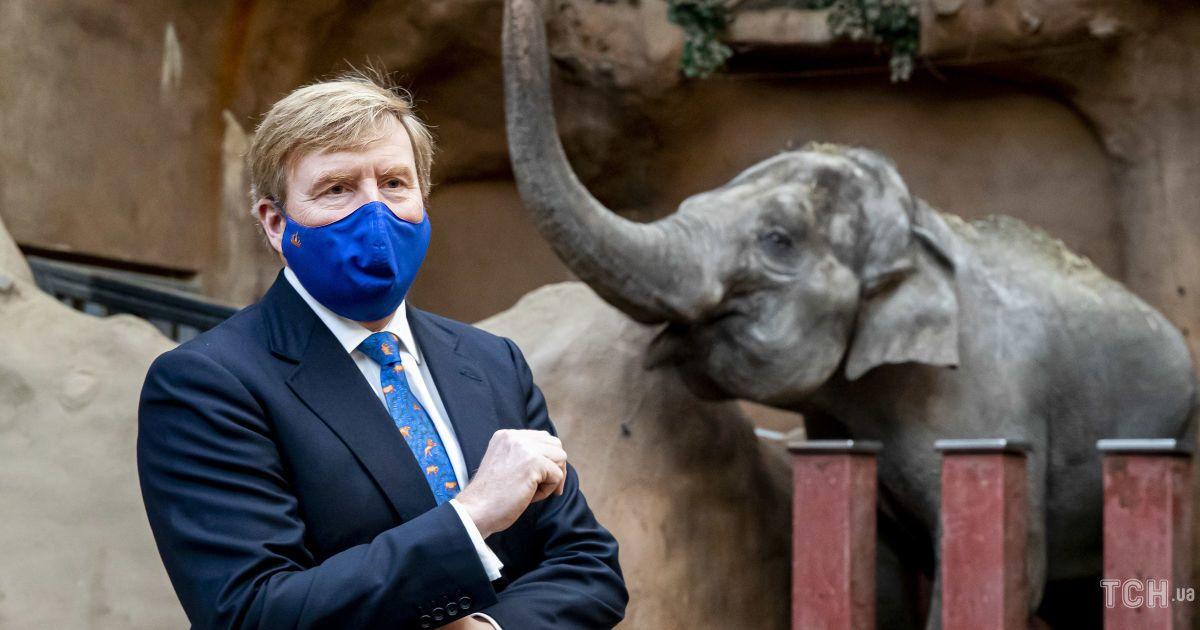 В забавном галстуке и со слоном: король Виллем-Александр посетил зоопарк