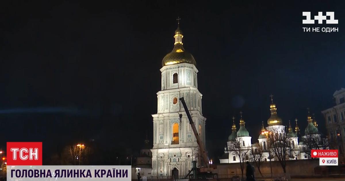97 тонн и 500 тысяч ветвей: в Киеве начали устанавливать главную новогоднюю елку Украины